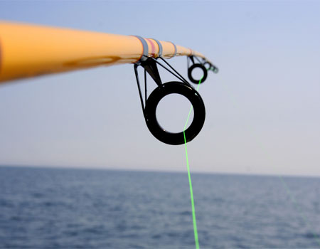 Fishing Line and Braid