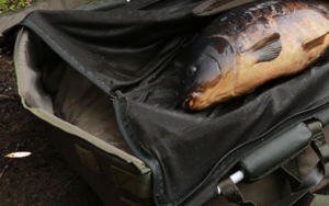 Carp Care Equipment